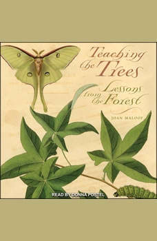 Teaching the Trees: Lessons from the Forest, Joan Maloof