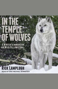 In the Temple of Wolves: A Winter's Immersion in Wild Yellowstone, Rick Lamplugh