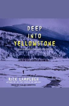 Deep into Yellowstone: A Year's Immersion in Grandeur and Controversy, Rick Lamplugh
