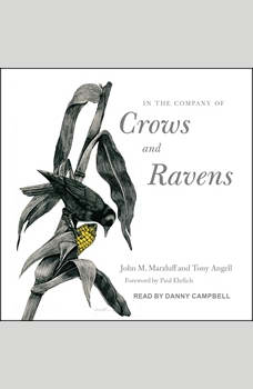 In the Company of Crows and Ravens, Tony Angell