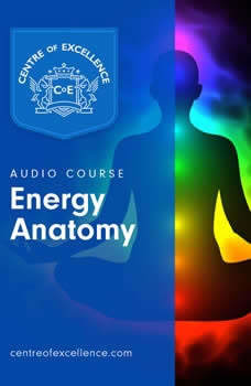 Energy Anatomy, Centre of Excellence