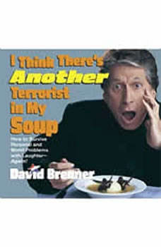 I Think There's Another Terrorist in My Soup, David Brenner