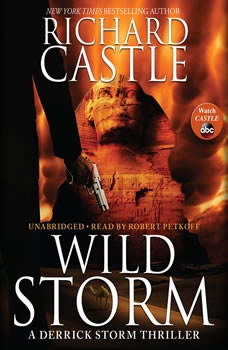 Wild Storm: A Derrick Storm Thriller A Derrick Storm Thriller, Richard Castle