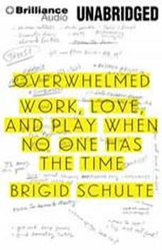 Overwhelmed: Work, Love, and Play When No One Has the Time, Brigid Schulte