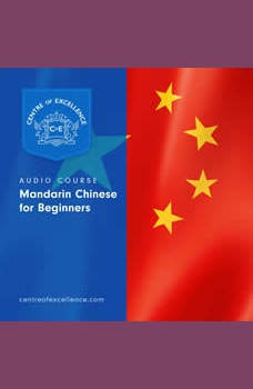 Mandarin Chinese for Beginners, Centre of Excellence