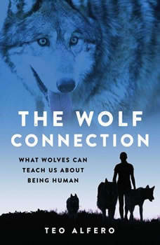 The Wolf Connection: What Wolves Can Teach Us About Being Human, Teo Alfero