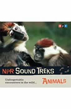 NPR Sound Treks: Animals: Unforgettable Encounters in the Wild, Jon Hamilton