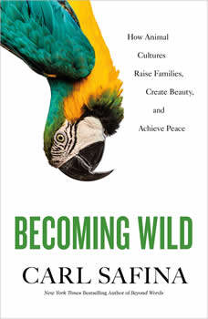 Becoming Wild: How Animal Cultures Raise Families, Create Beauty, and Achieve Peace, Carl Safina