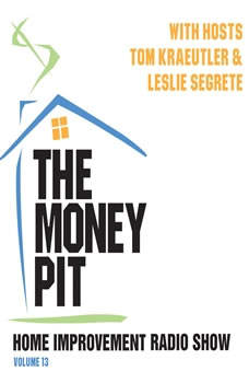 The Money Pit, Vol. 13, Unknown