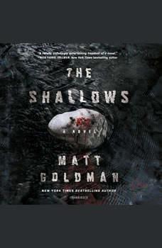 The Shallows, Matt Goldman