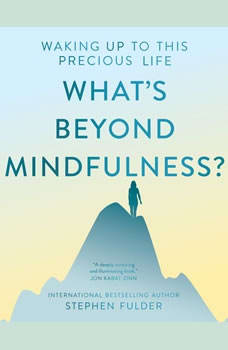 What's Beyond Mindfulness?: Waking Up to this Precious Life, Stephen Fulder