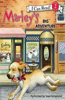 Marley: Marley's Big Adventure, John Grogan