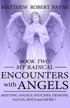 My Radical Encounters with Angels, Matthew Robert Payne