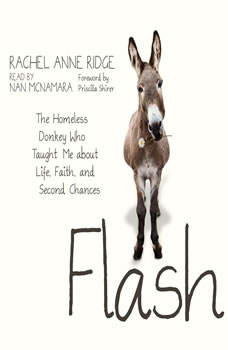 Flash: The Homeless Donkey Who Taught Me about Life, Faith, and Second Chances, Rachel Anne Ridge