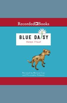 Blue Daisy, Helen Frost