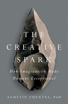 The Creative Spark: How Imagination Made Humans Exceptional, AgustA­n Fuentes