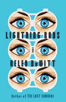 Lightning Rods, Helen DeWitt