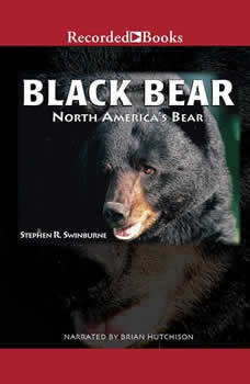 Black Bear: North America's Bear, Stephen R. Swinburne