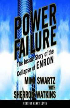 Power Failure: The Inside Story of The Collapse of Enron, Mimi Swartz