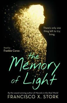 The Memory of Light, Francisco X. Stork