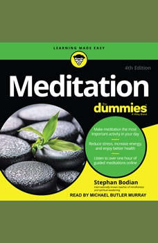 Meditation For Dummies, Stephan Bodian