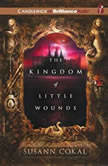 The Kingdom of Little Wounds, Susann Cokal