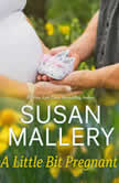 A Little Bit Pregnant, Susan Mallery