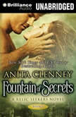 Fountain of Secrets, Anita Clenney