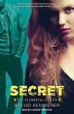 Secret, Brigid Kemmerer