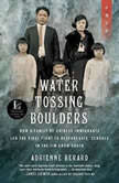 Water Tossing Boulders How a Family of Chinese Immigrants Led the First Fight to Desegregate Schools in the Jim Crow South, Adrienne Berard