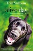Alive Day, Tom Sullivan