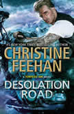 Desolation Road, Christine Feehan