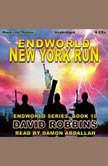New York Run , David Robbins