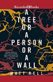A Tree or a Person or a Wall Stories, Matt Bell