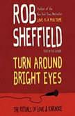 Turn Around Bright Eyes A Karaoke Love Story, Rob Sheffield