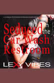 Seduced in the Car Wash Restroom Lesbian Younger Woman Older Woman Erotica, Lexy Vibes