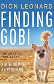 Finding Gobi A Little Dog with a Very Big Heart, Dion Leonard