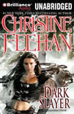 Dark Slayer, Christine Feehan