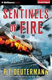 Sentinels of Fire, P. T. Deutermann