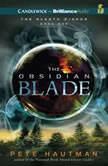 The Obsidian Blade, Pete Hautman