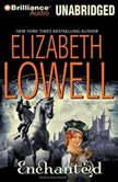 Enchanted, Elizabeth Lowell