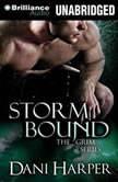 Storm Bound, Dani Harper