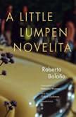 A Little Lumpen Novelita, Roberto Bolano