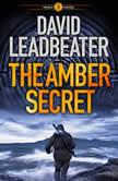 The Amber Secret, David Leadbeater