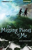 The Missing Pieces of Me, Jean Van Leeuwen