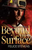 Beyond the Surface, Felice Stevens
