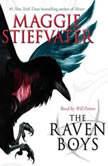 The Raven Boys, Maggie Stiefvater