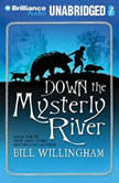 Down the Mysterly River, Bill Willingham