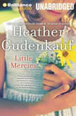 Little Mercies, Heather Gudenkauf