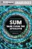 Sum Tales from the Afterlives, David Eagleman